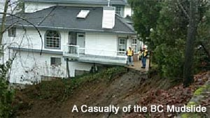 A Casualty of the BC Mudslide