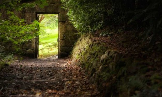 Wide and Narrow Gates