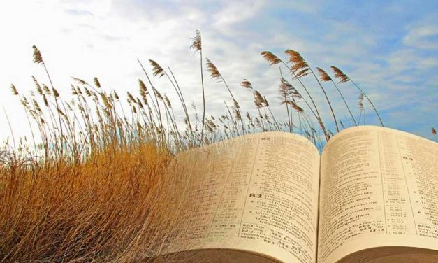 Is Spiritualizing Viable?
