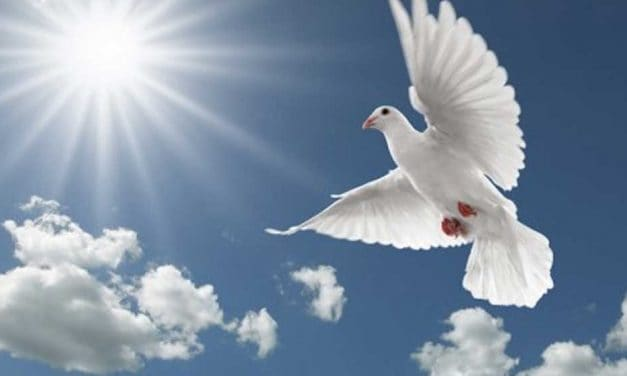 Peace from God