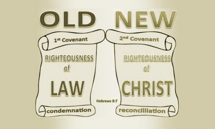 Terms of the Covenants